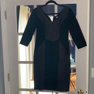 Maxandcleo dress size 6